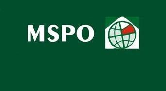 logo_MSPO_2